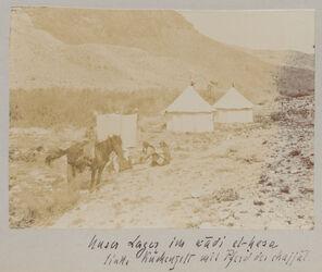 Fotoalbum Unser Lager im im wadi el-hesa links Küchenzelt mit Pferd des chajjal.