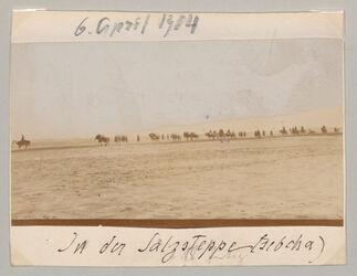 Fotoalbum 6. April 1904 In der Salzsteppe (sebcha)