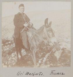 Fotoalbum Bei Muchmas. Fenner