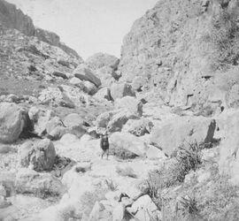GDIs01198; Fotoalbum; bei kal'at [kalat] ed-damur im wadi es-swenit, Album Gustaf Dalman, 1903-05, Blatt 22 Vorderseite (GDIs01197) oben links