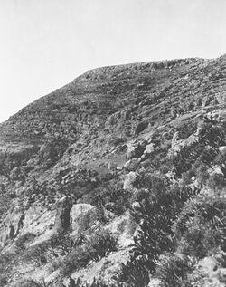 GDIs01199; Fotoalbum; Verwerfung auf d. Südseite des w. [wadi] es-swenit, Album Gustaf Dalman, 1903-05, Blatt 22 Vorderseite (GDIs01197) oben Mitte