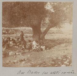 GDIs01234; Fotografie; Bahnhof Maan [Kalat ibn-maan ?], aus Bestand von gut 1.300