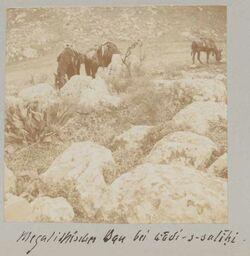 Fotoalbum Megalithischer Bau bei wadi-s-salihi [wadi es-salihi].