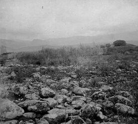 GDIs01429; Fotoalbum; Bei tell el-kadi (Dan) [Tell al-Kadi]., Album Gustaf Dalman, 1905, Blatt 55 Vorderseite (GDIs01425) unten links