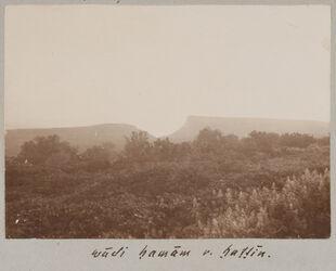 Fotoalbum wadi hamam [Taubental] v. hattin. [Berg der Seligpreisungen]