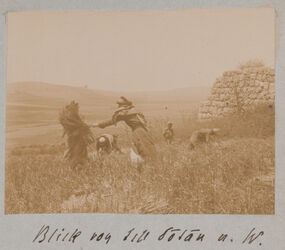 Fotoalbum Blick von tell dotan [Dothan] n. W.