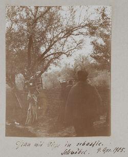 Fotoalbum Frau mit Wiege in sebastie. Schwöbel. 9. Apr. 1905.