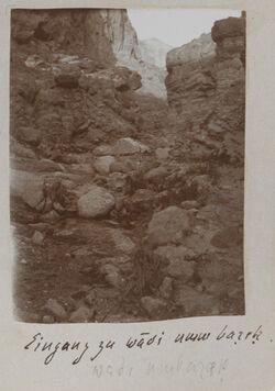 Fotoalbum Eingang zu wadi umm barek.