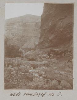 Fotoalbum wadi umm barek von O.
