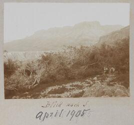 Fotoalbum Blick nach S. April 1905 [wohl En-Gedi]