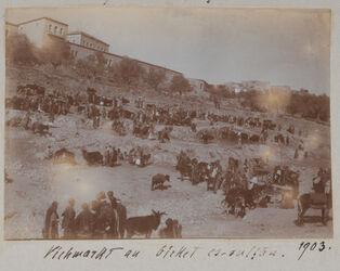 Fotoalbum Viehmarkt an birket es-sultan [Sultansteich, Jerusalem].