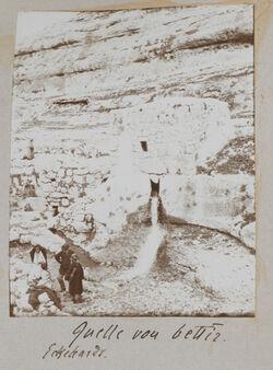 Fotoalbum Quelle von bettir [wadi bettiir]. Eckehardt [Eckardt].