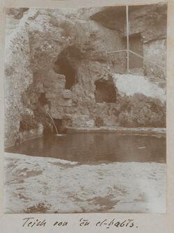 Fotoalbum Teich von en el-babis. [Petra, Umgebung]