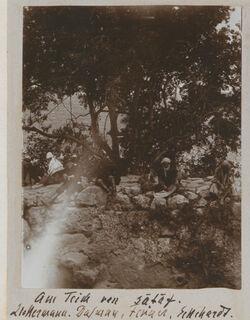 Fotoalbum Am Teich von sataf. Zickermann [als Fotograf?]. Dalman, Fenner, Eckehardt [Eckardt].