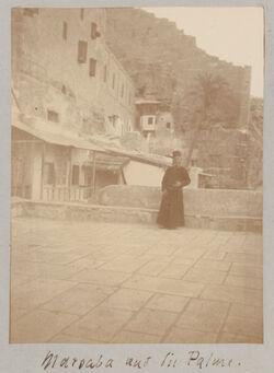 Fotoalbum Marsaba [mar saba] und die Palme.