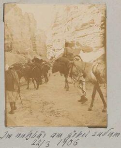 Fotoalbum am nuhbar [en-nuchbar] am Gebel sudum [dschebel, djebel] 22/3 1906