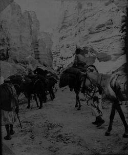 GDIs01675; Fotoalbum; am nuhbar [en-nuchbar] am Gebel sudum [dschebel, djebel] 22/3 1906, Album Gustaf Dalman, 1906-10,Vorderseite Blatt 2 (GDIs01673) oben rechts