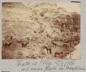 Fotoalbum Theater in Petra mit unseren Pferden und Maultieren 27/3/1906