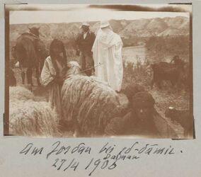 Fotoalbum Am Jordan bei ed-damir [Ed-damie]. Dalman 27/4 1906