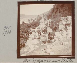 Fotoalbum Nov. 1906 Bei