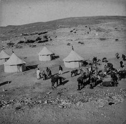 GDIs01708; Fotoalbum; Unser Lager bei el-kerak Nov. 1906, Album Gustaf Dalman, 1906-10, Vorderseite Blatt 9 (GDIs01706) oben rechts