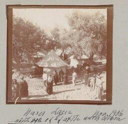 Fotoalbum Unser Lager nördl. von et-tafile unter Oliven Nov. 1906