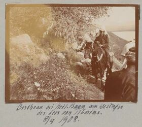 Fotoalbum Bertheau bei heil. Baum am Westufer des Sees von Tiberias [Genezareth (See)]. 8/4 1908.
