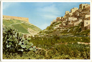 Postkarte Jerusalem. Das Kidrontal, Blick gegen Norden, links die Südostecke der Umfassungsmauer des Tempelplatzes, rechts das Dorf Siloa.