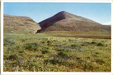 Postkarte Der Berg des Absturzes und Jesreelebene bei Nazareth