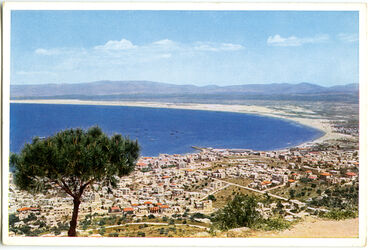 Postkarte Haifâ [Haifa]. Stadt und Bucht, Berge Galiläas vom Karmel