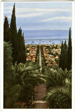 Postkarte Haifâ, The German Colony Haifâ, La Colonie Allemande Haifa, Die Deutsche Kolonie