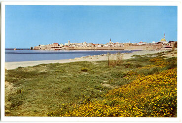 Postkarte Akkâ [Akko]. Das Akkon der Kreuzfahrer von Südost