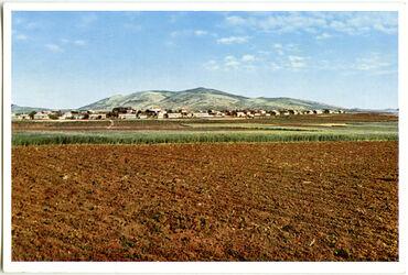 Postkarte The jewish Colony Misra. La Colonie juive Misra. Die jüdische Kolonie Misra