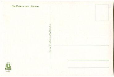 GDIs01898; Postkarte; Die Zedern des Libanon, Schuber [GDIs01896] mit 44 Farbdruck-Postkarten [GDIs01898-1941] und einer Syrienkarte [GDIs01897]