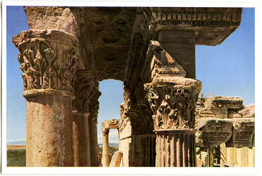Postkarte Baalbek. Bacchustempel, Architrav