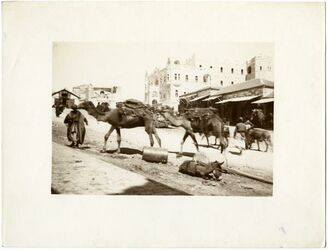 GDIs01985; Fotografie; [Jerusalem, Paulushaus, vor dem Damaskustor], aus einem Bestand von rund 90 Papierabzügen (GDIs01982-GDIs2071)