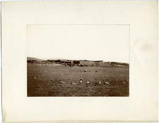 Fotografie [Arabische Halbinsel]