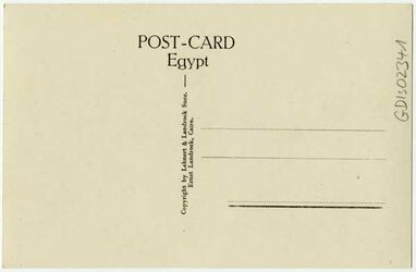 GDIs02341; Postkarte; Cairo [Kairo] - General View
