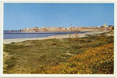 Postkarte Akka [Akko]. Das Akkon der Kreuzfahrer von Süden