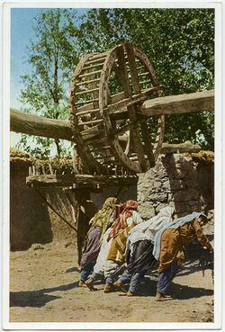 Postkarte Felachinnen an einem Wasserschöpfrad bei Kilkilje