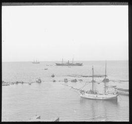 Glasplattendia Hafen von Jaffa