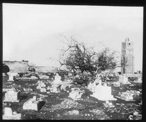 Glasplattendia Friedhof und Turm in ramle, Weisse Moschee v. er-ramle Ende Januar 1911 Lohm.
