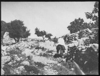 Glasplattendia Aufstieg n. Bethhoron unterster Teil, Ezzal, Dalman