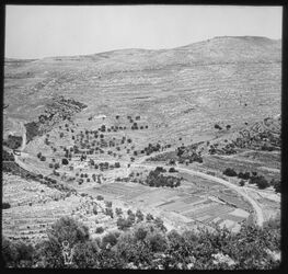 Glasplattendia Blick auf das Wadi Betir, Bahnhof, Seitental vor bettir