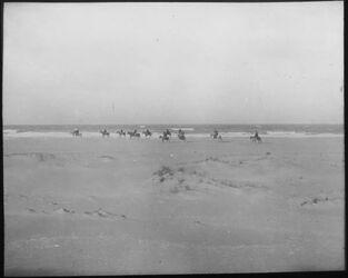 Glasplattendia Am Strande bei Tyrus