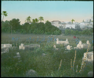 Glasplattendia Genin [dschenin, djenin, jenin] u. Friedhof