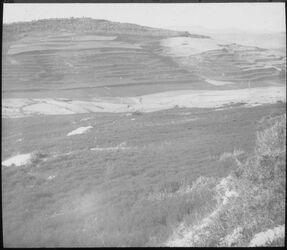 Glasplattendia Hügel v. Samaria von N