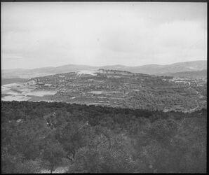 Glasplattendia Hügel von Samaria v. S.