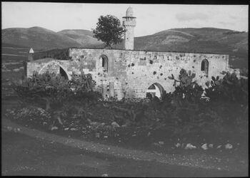 Glasplattendia Moschee in sebastie