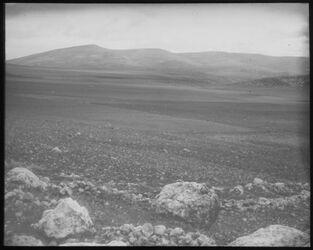 Glasplattendia Gilboagebirge v. zer